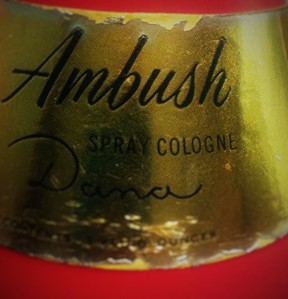 Ambush 1